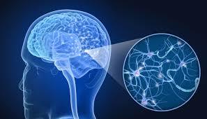 Medicamentos del sistema nervioso central